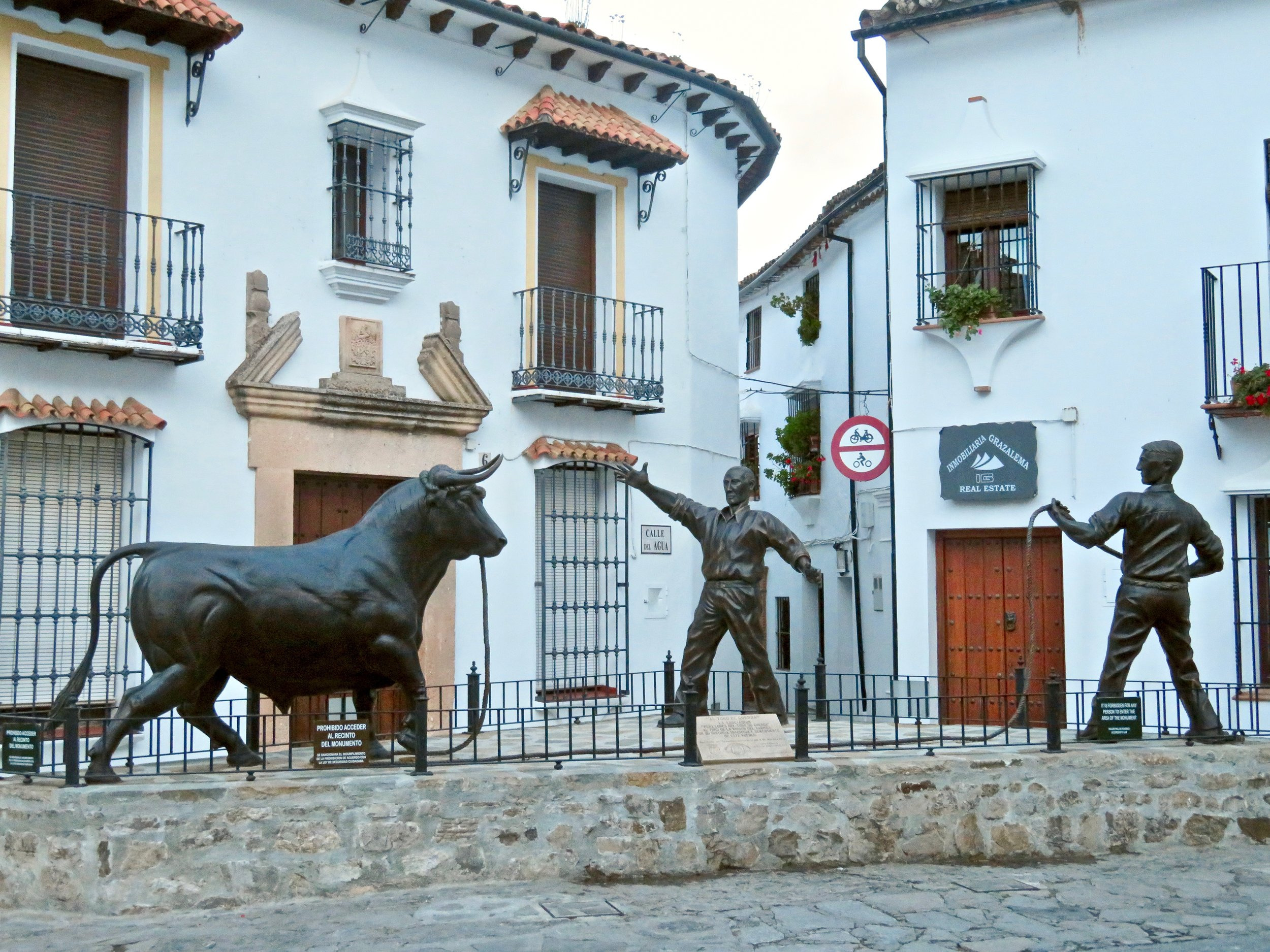 Bull fighting/running is still alive & well in Spain!