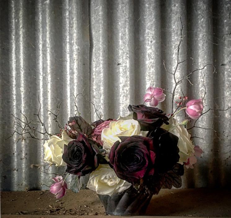 dark rose.jpg