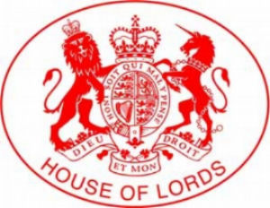 Read   written evidence provided to the House of Lords inquiry on Brexit implications for energy security    Watch   Thierry Bros' intervention at the Economic Affairs Committee of the House of Lords, 12 November 2013 (from 16:01)