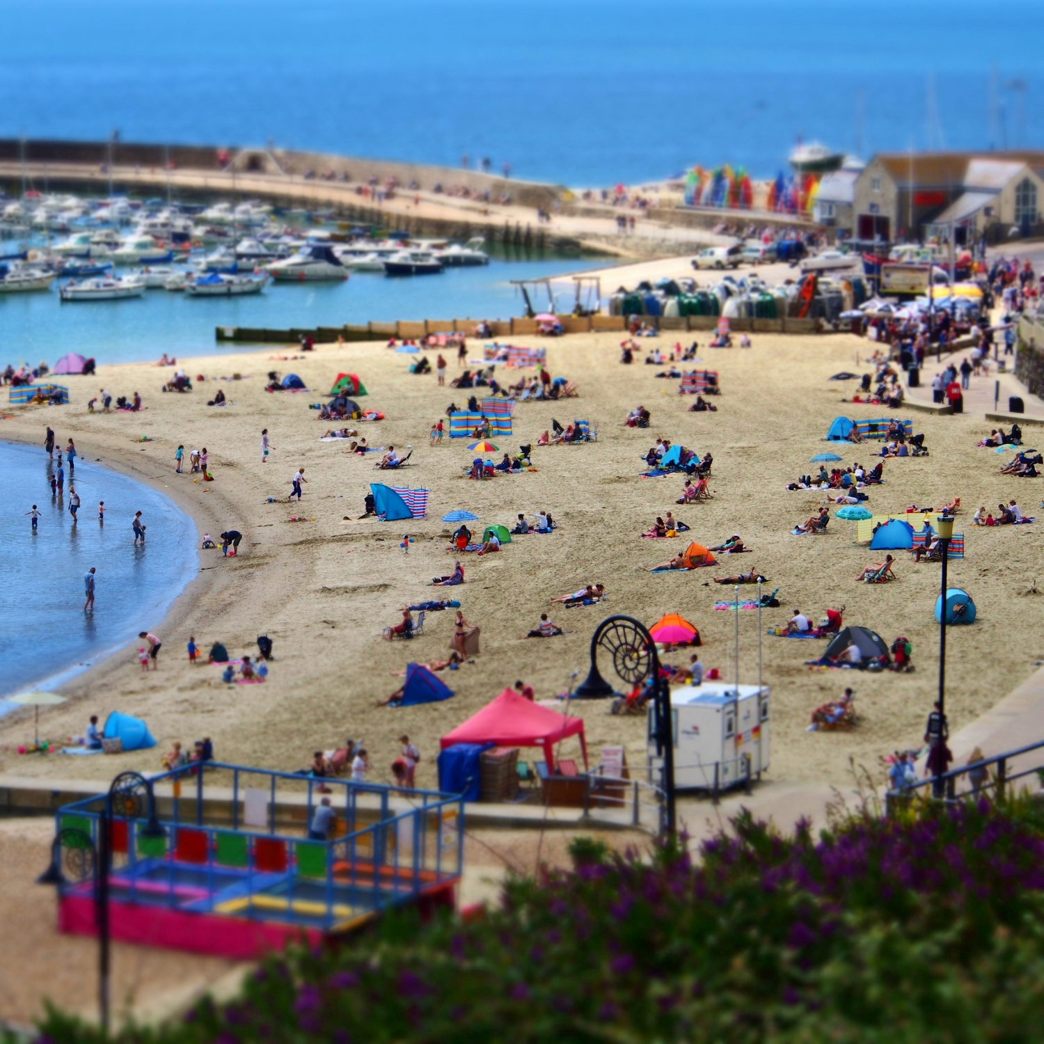 Lyme Regis Beach in the summer time