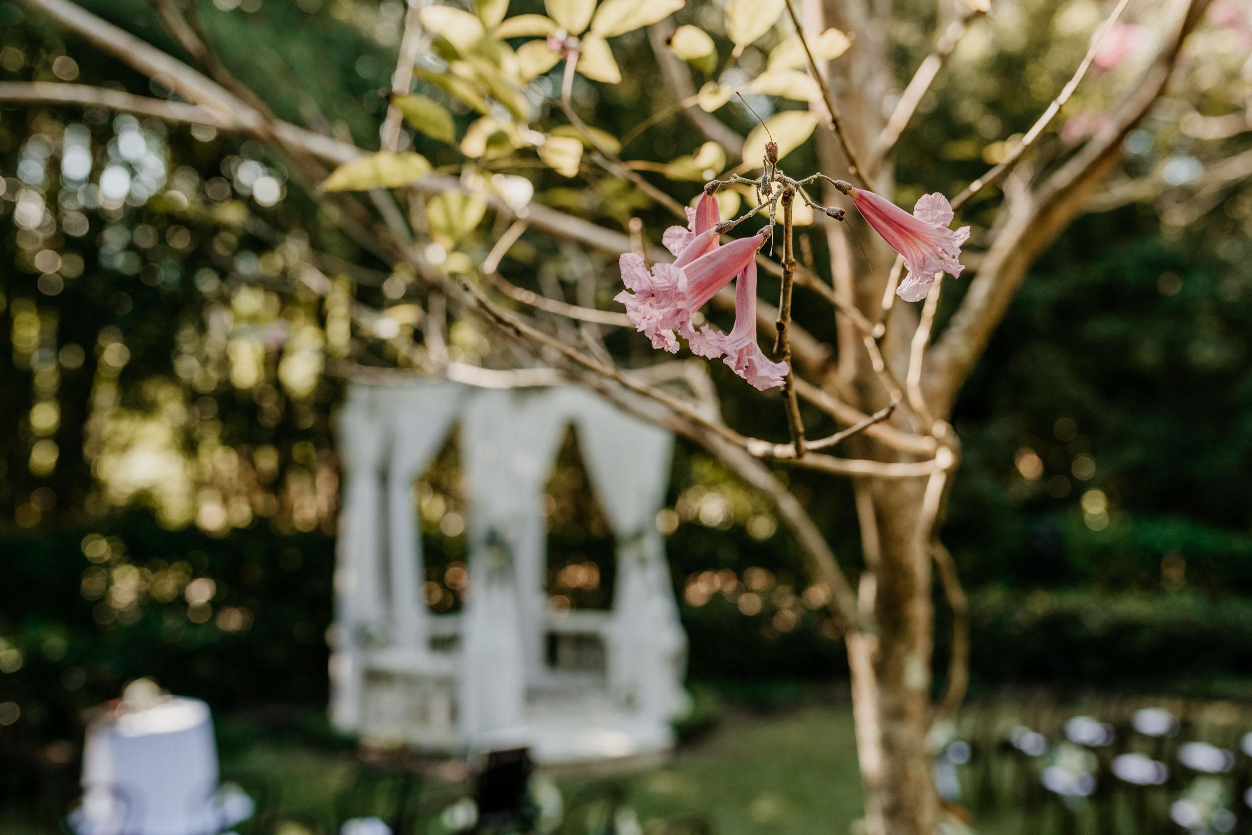 The Raw Photographer - Cairns Wedding Photographer - Laloli - Cairns Garden Wedding - Bride Dress - Destination Wed - Outdoor Reception - Queensland Ceremony-24.jpg
