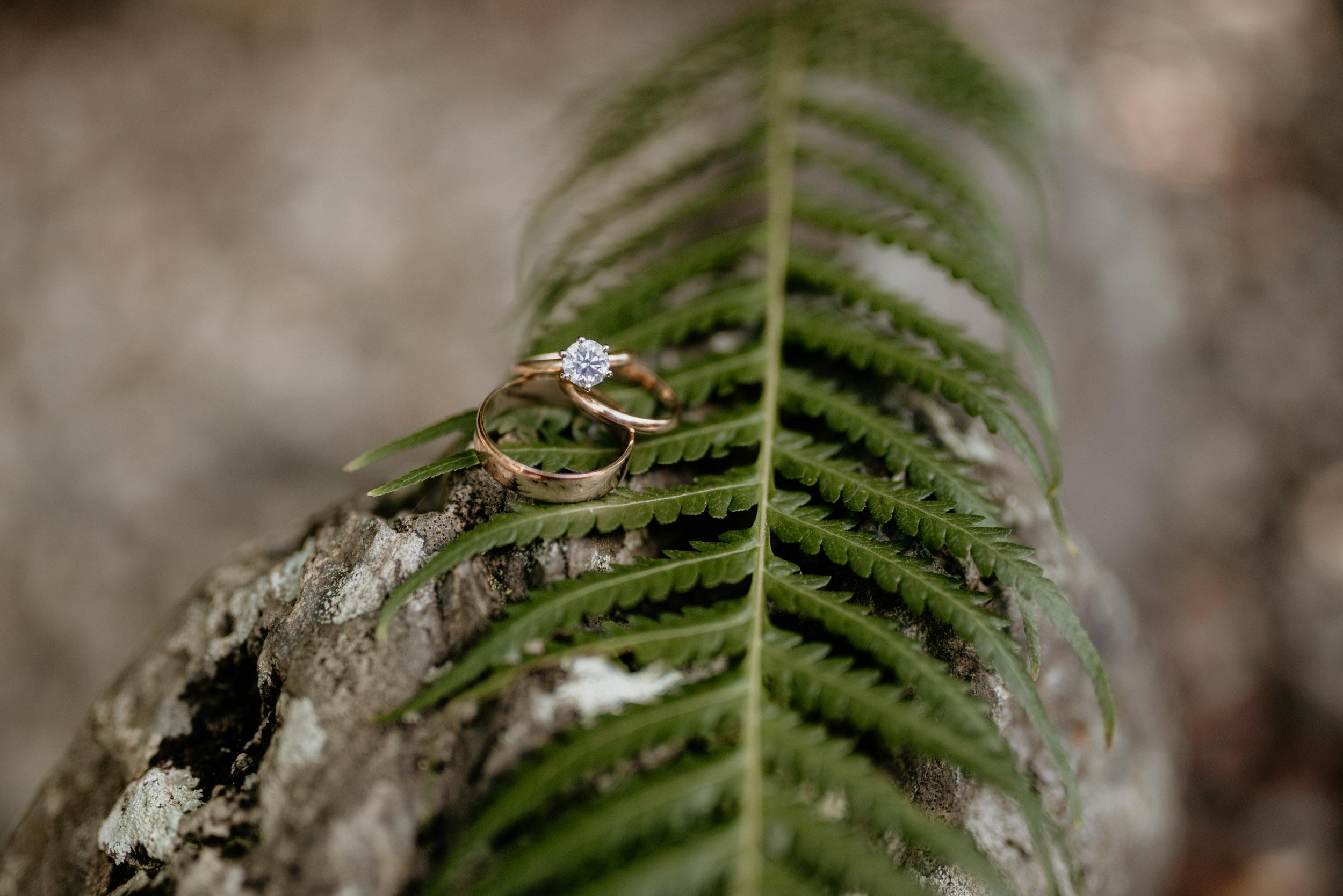 The Raw Photographer - Cairns and Port Douglas Wedding Photographer - Best of 2018-2.jpg