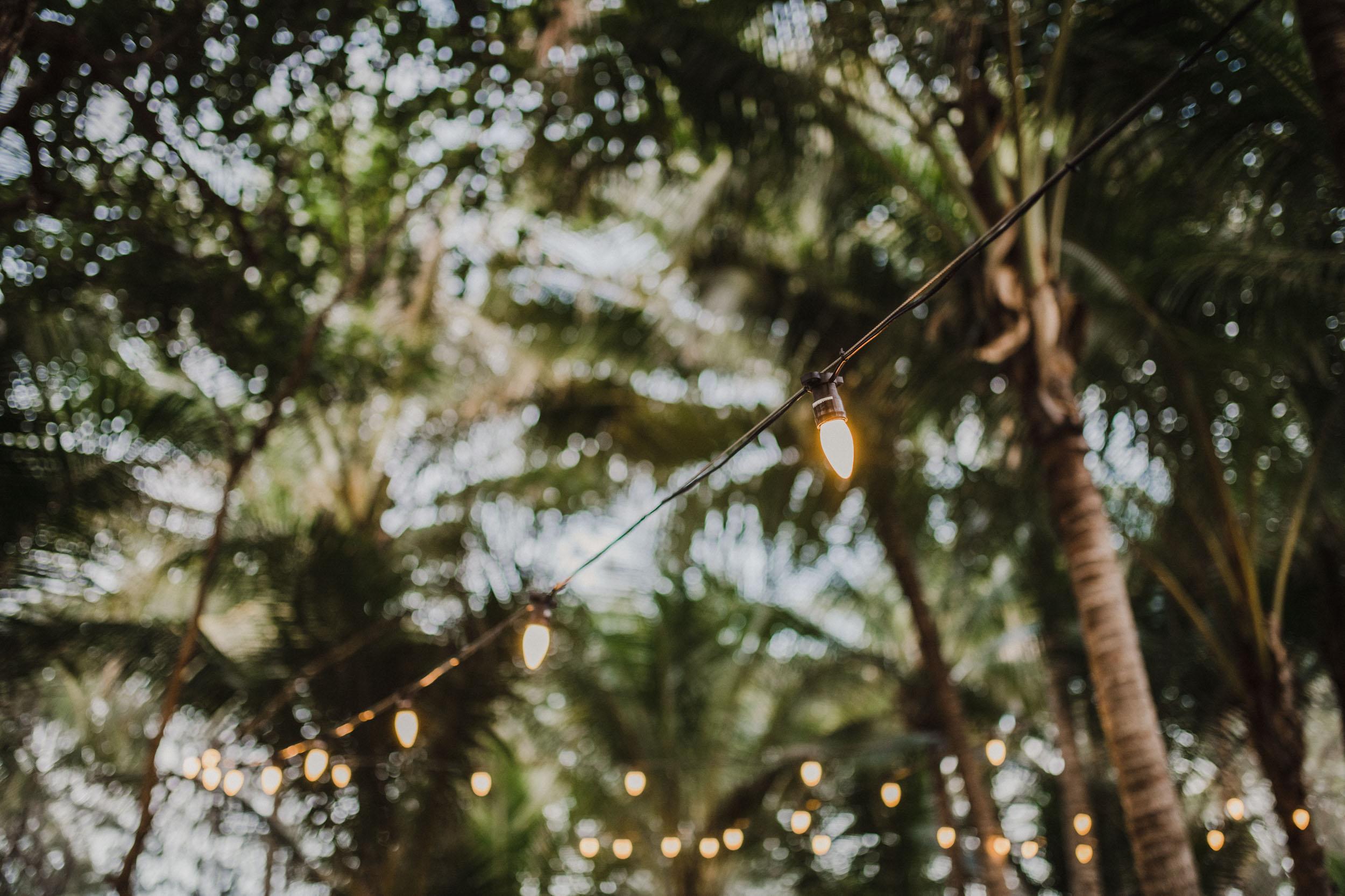 The Raw Photographer - Cairns Wedding Photographer - Thala Beach - Port Douglas Beach Elopement -  Made with love Bridal Dress-2.jpg