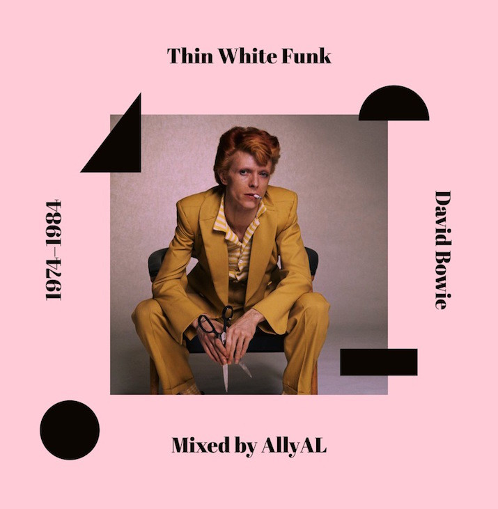 David Bowie Tribute: Thin White Funk by AllyAl