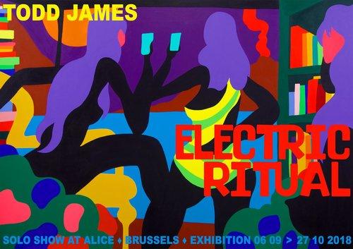 Todd+James+Alice+Gallery+poster.jpg