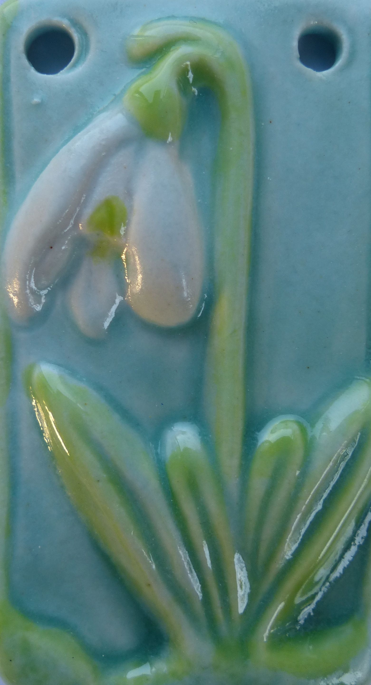 snow drop blue.jpg