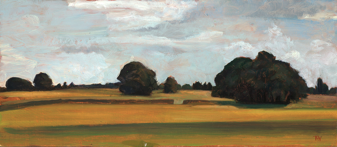 "'Beech Clumps at Lansdowne, Bath' 16x36cm (6""x14"") oil on gesso panel. Private collection."
