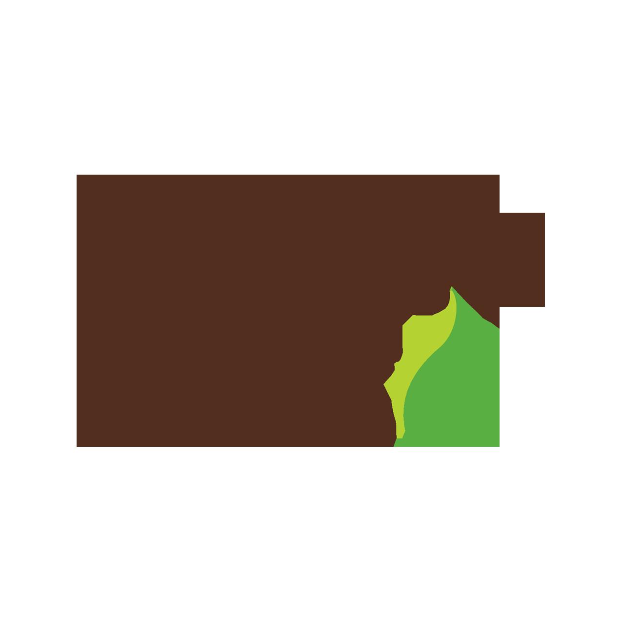 PatikaPets_LogoTM_V.png