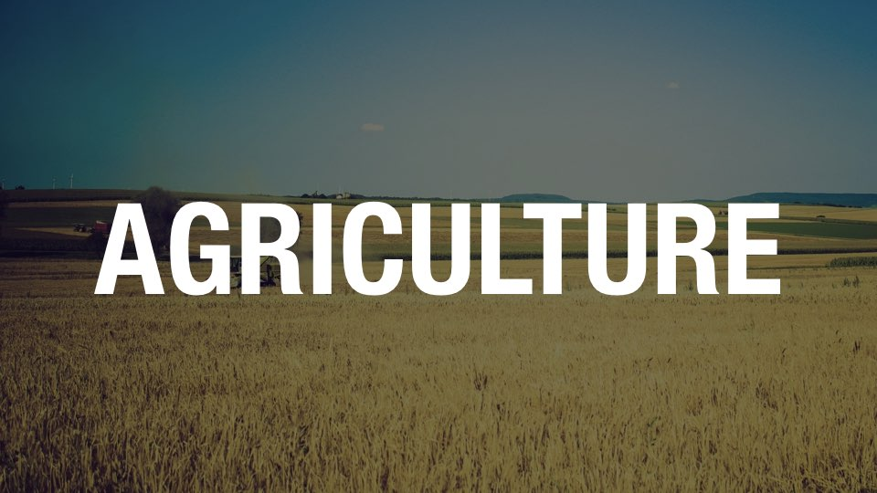 agriculture.jpeg