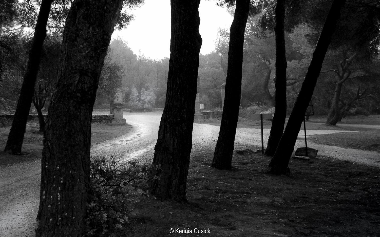 abbaye de saint croix driveway.jpg