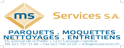 MS Services(site).png