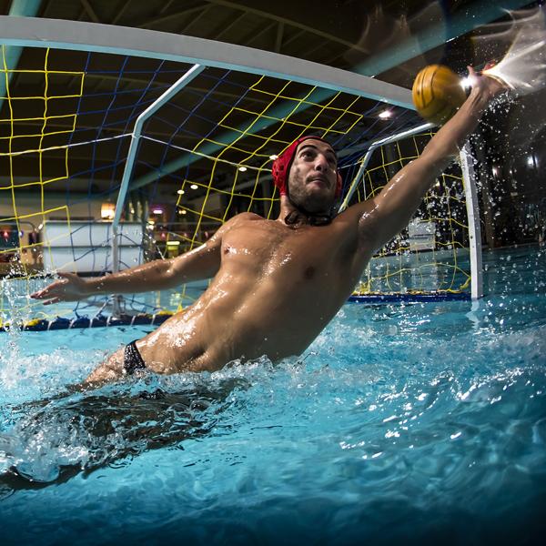 Section Waterpolo - Une école de waterpolo,7 équipes en Championnat Suissede très nombreux titres nationaux