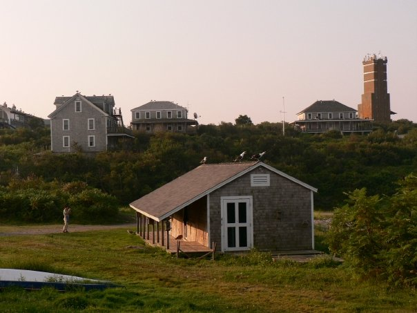 The banding station at the Shoals Marine Laboratory. Appledore Island, ME