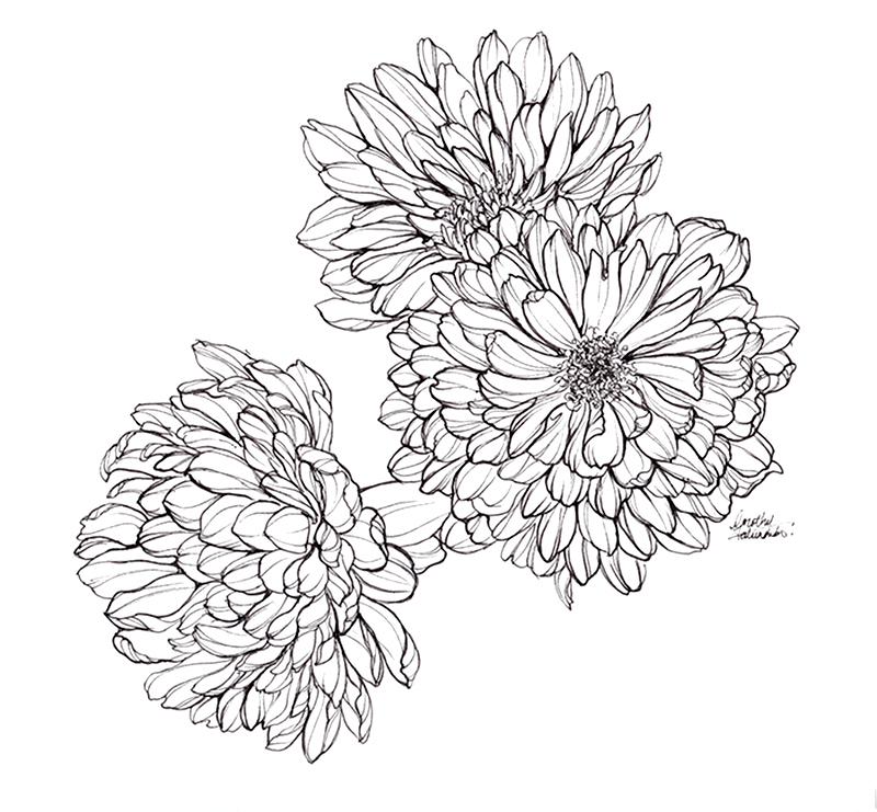 Three blooms
