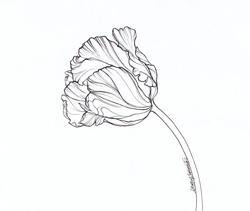 Leaning tulip