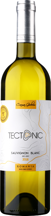 Sauvignon Blanc    Deep aromas of lime, green apple, passion fruit and peach with a slight vegetal tone of peppers and gooseberry, all completed by a crisp acidity and moderate alcohol.