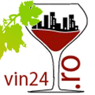 vin24 logo.png