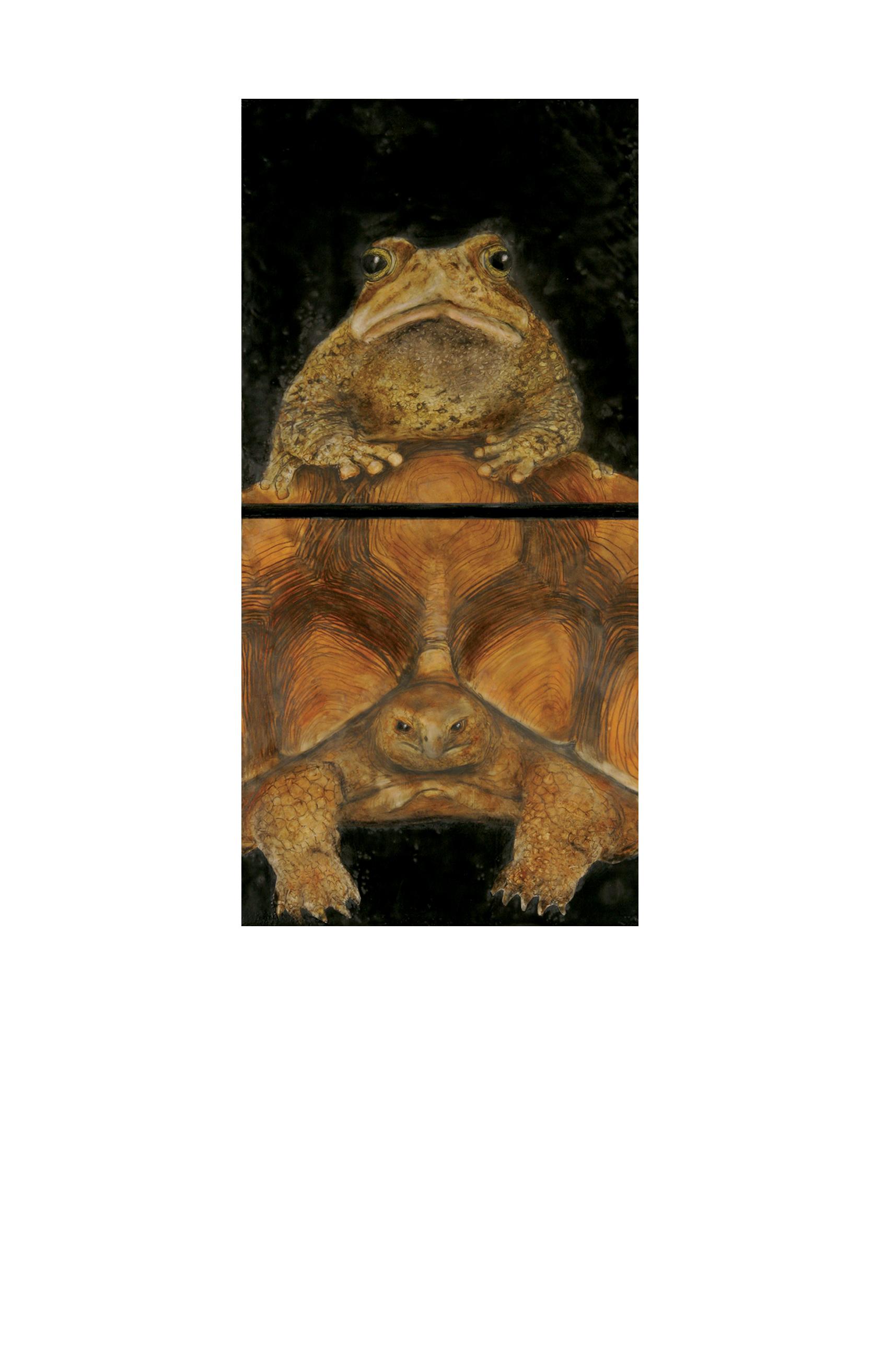 Toad & Tortoise