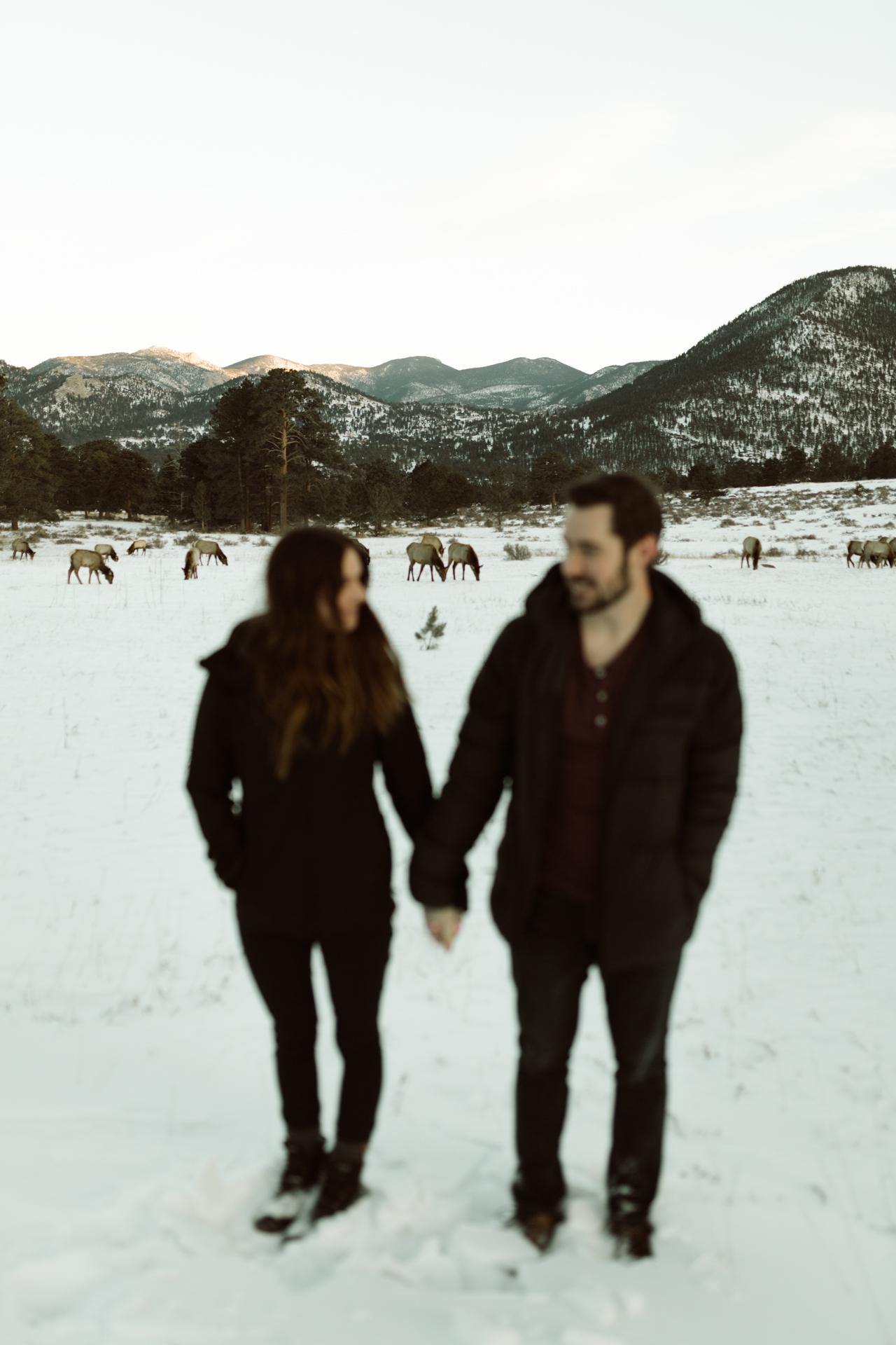 winter-rocky-mountain-national-park-engagements-re-6.jpg