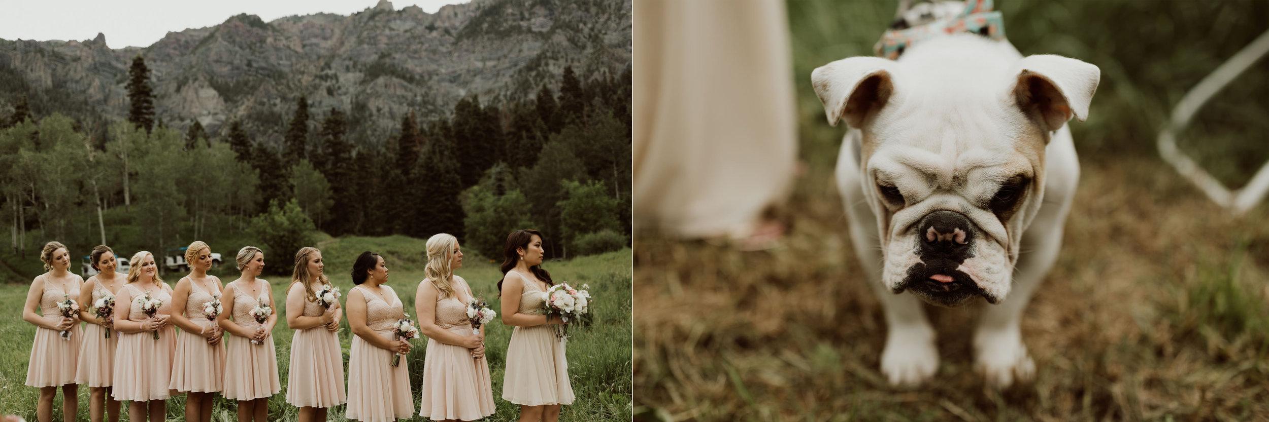 ouray-colorado-adventure-jeep-wedding_PS9.jpg