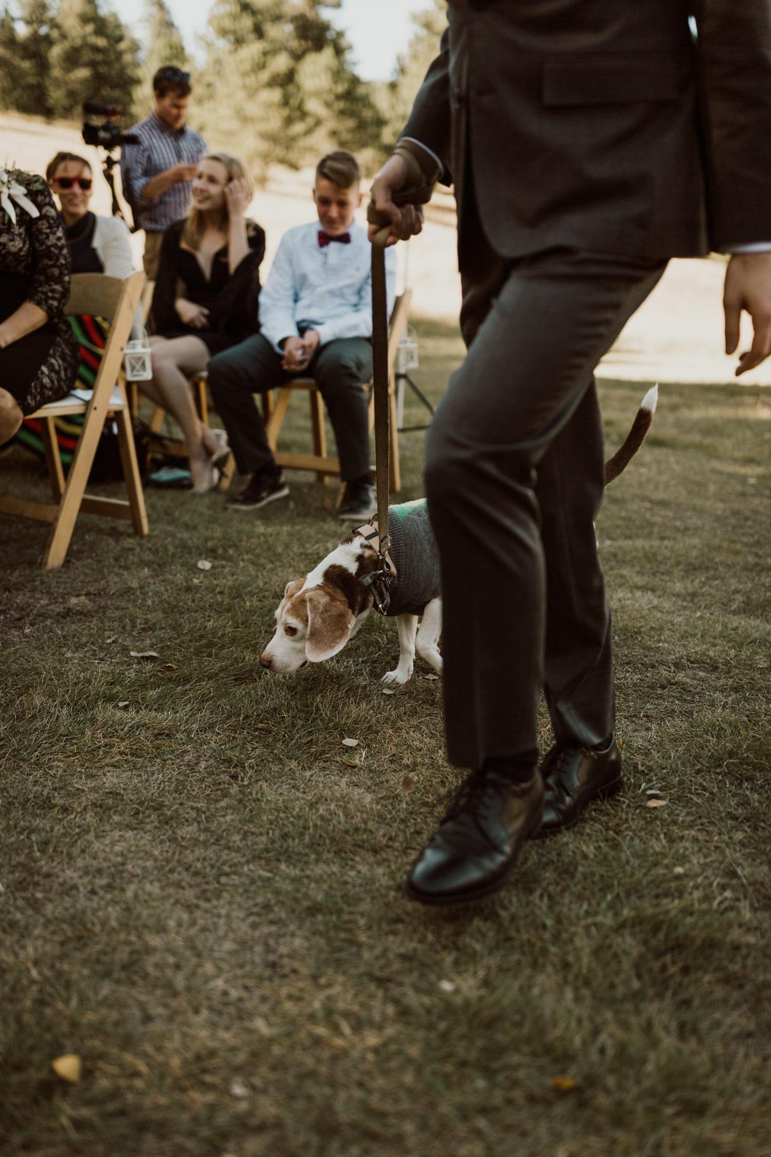 intimate-colorado-fall-wedding-22.jpg