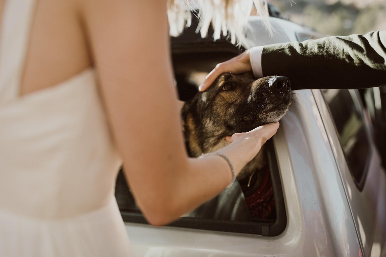 zion-national-park-wedding-104.jpg