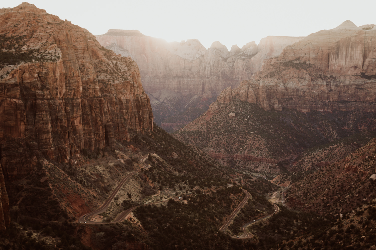zion-national-park-engagements-39.jpg