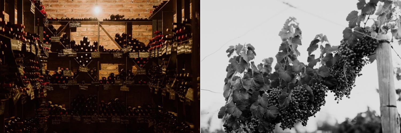002_lodge_cavas_mendoza_grapes_wine.jpg