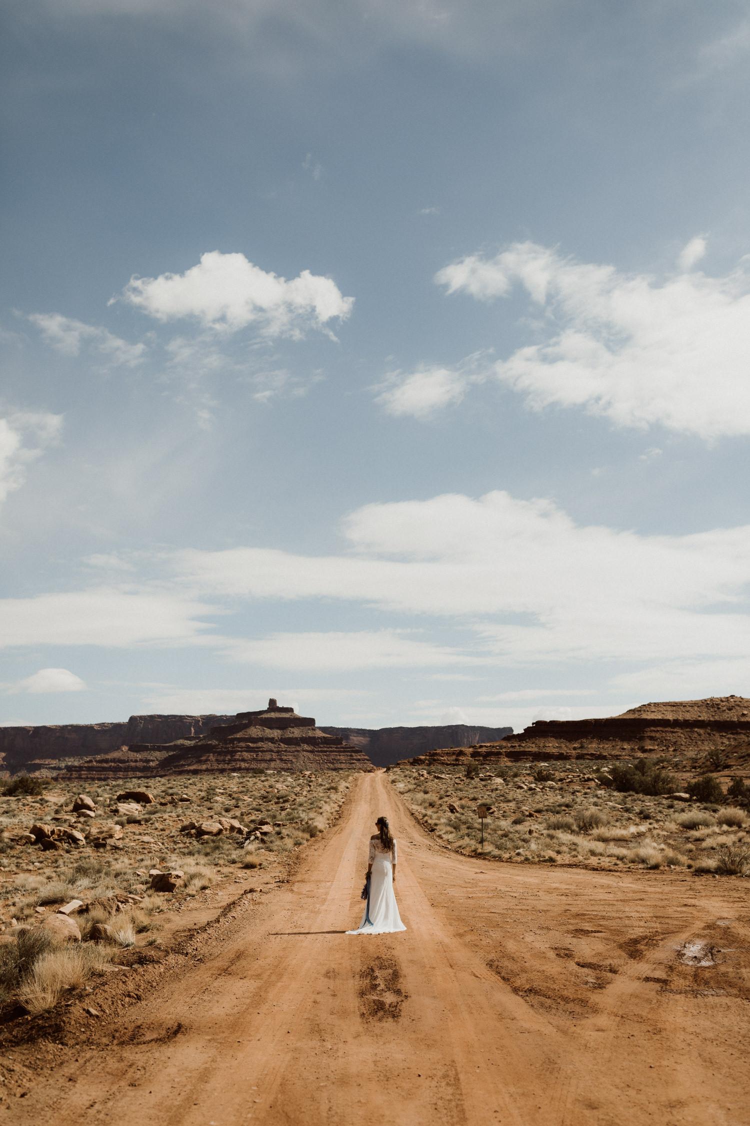 56_adventure-bridals_horse_dead_point.jpg