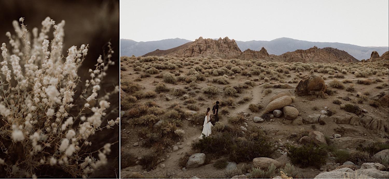 19_wedding_adventurous_desert.jpg