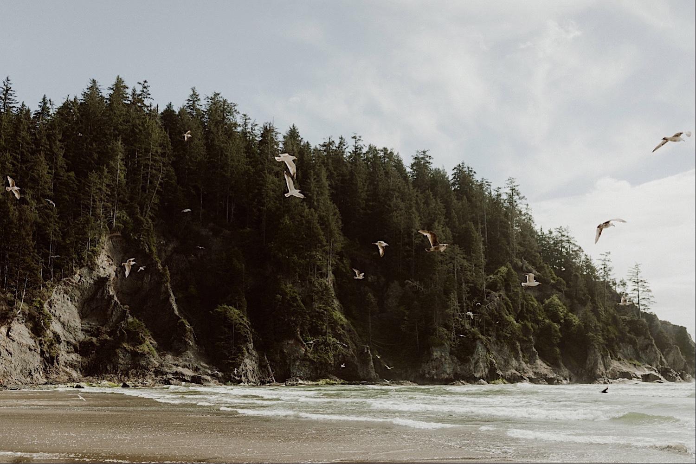 18_cedarandpines-short-sands-1_Oregon_Moodboard_Coast_Wedding.jpg