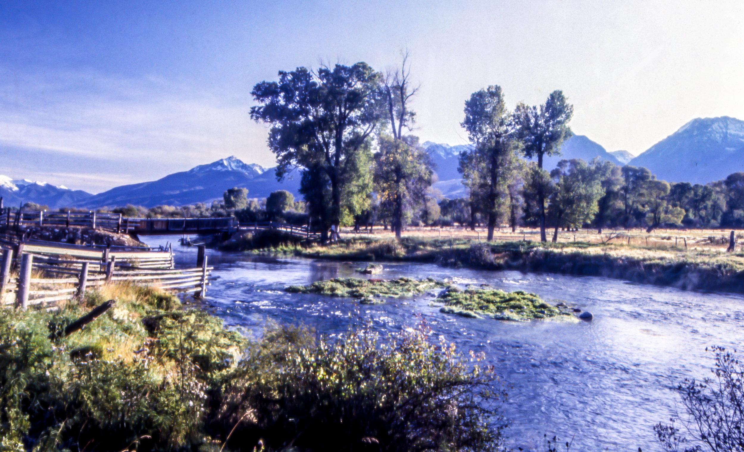 Armstrong Spring Creek, Paradise Valley, Livingston, Montana.