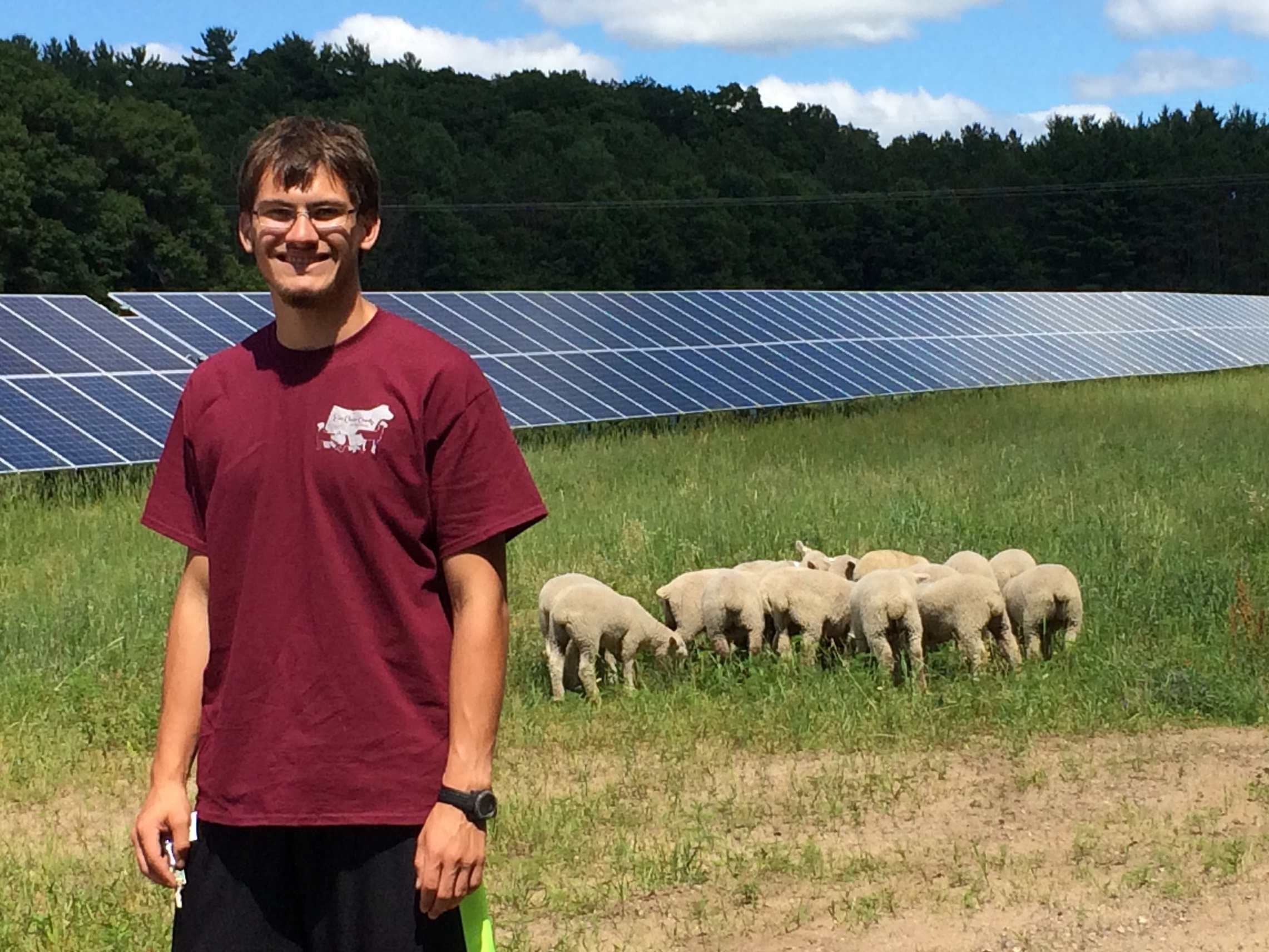 Eau Claire - DylanK with sheep and solar panels.JPG