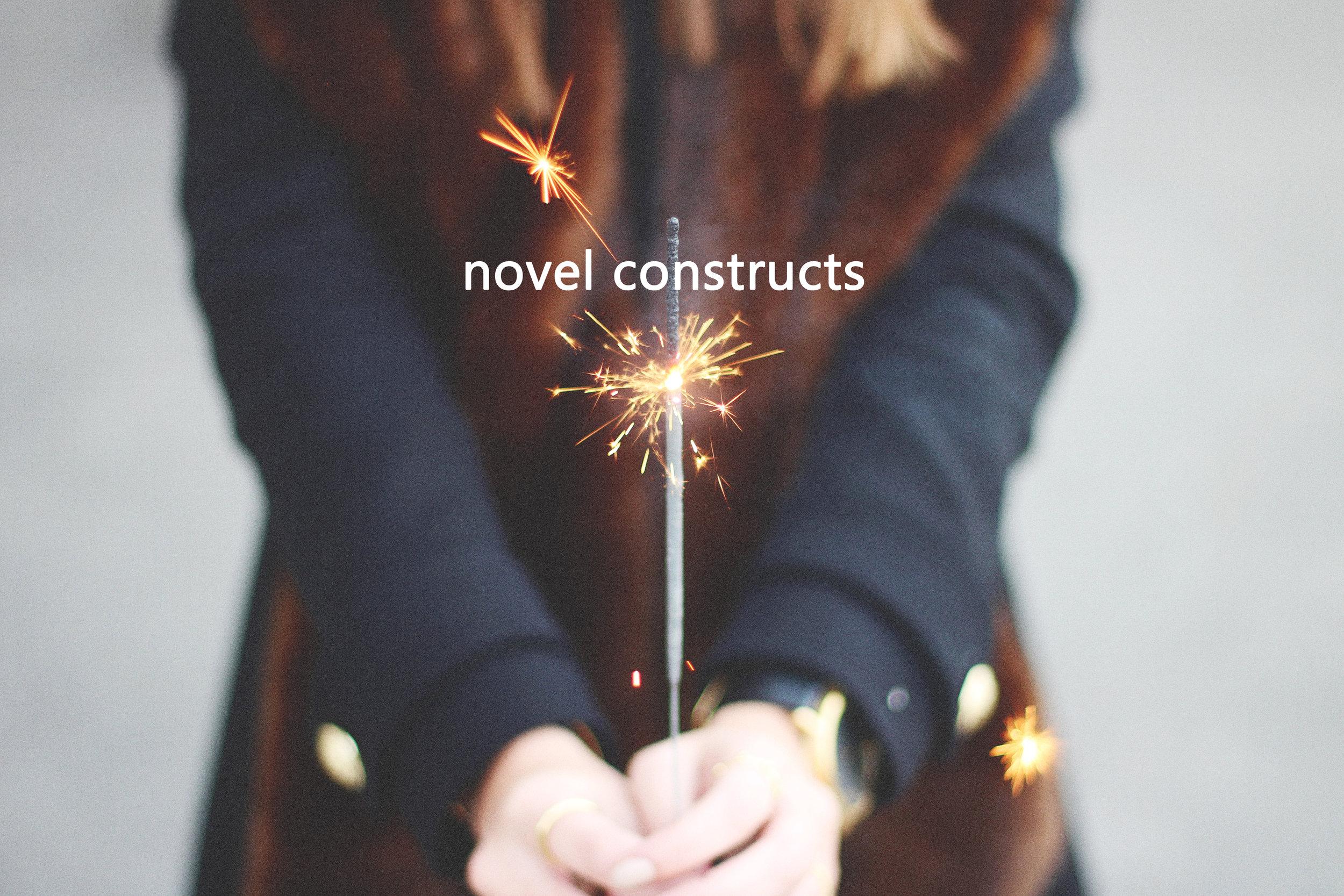 Novel Constructs