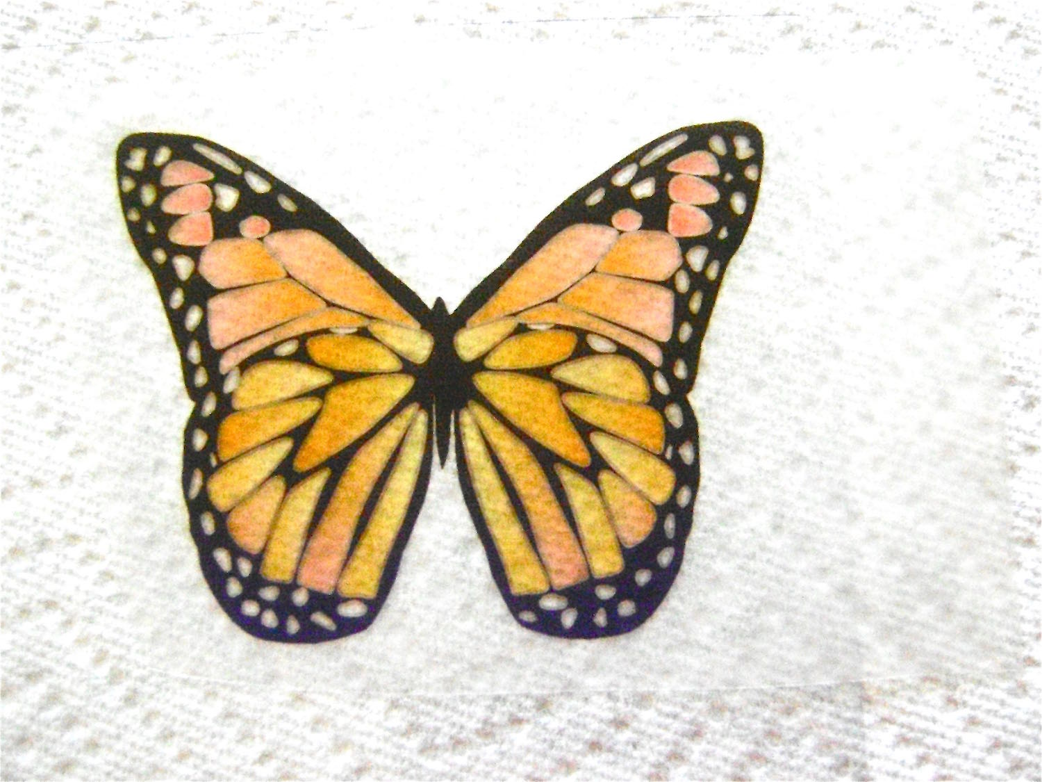 step 4 - Carefully peel the backing from the film. Lay the butterfly wing on the clear plastic sheet, glue side down, smoothing it as release it. The wings should be wrinkle free and attached on all edges.