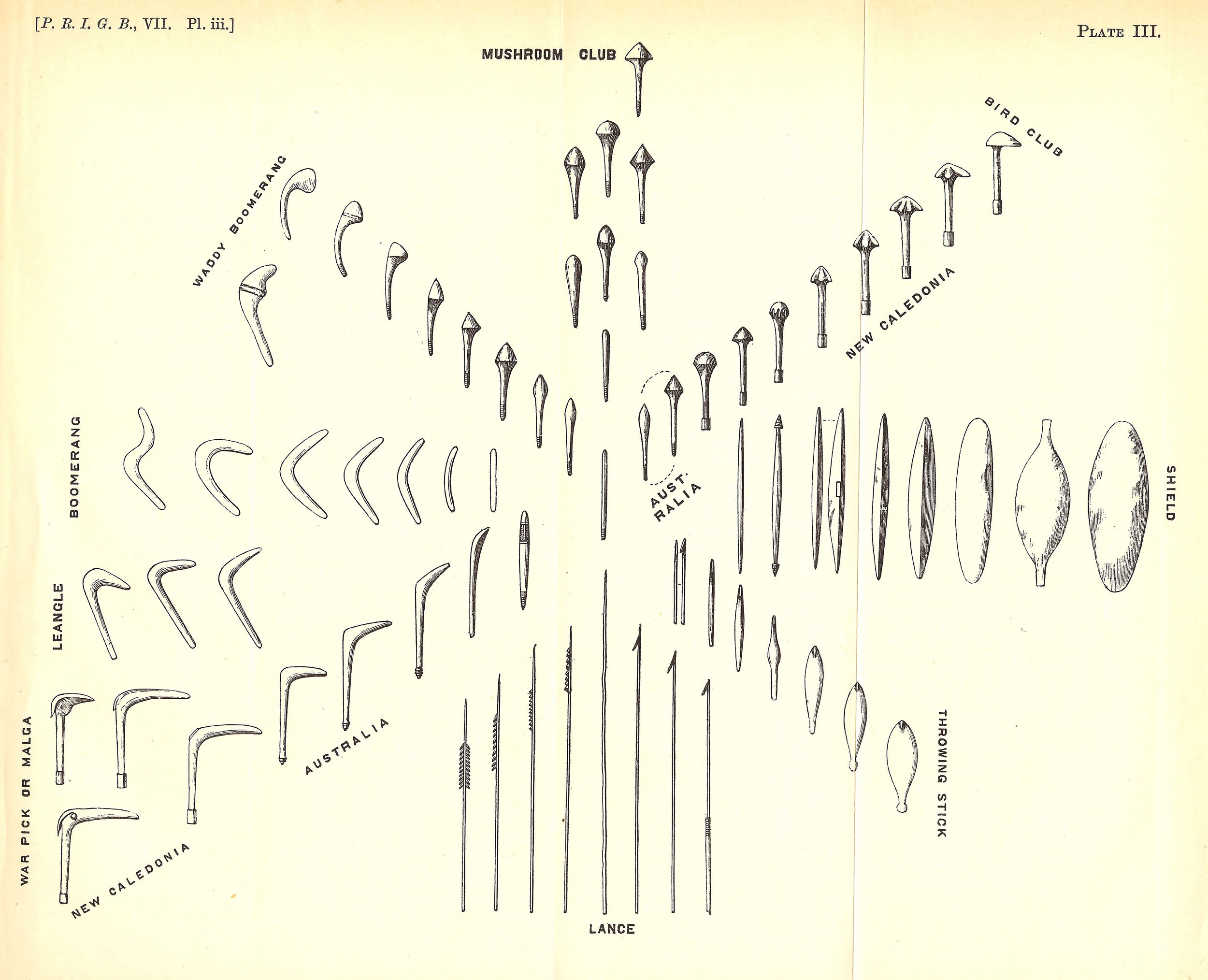 An image from Pitt-Rivers' 1875 book  On The Evolution Of Culture , showing the gradual accumulation, modification and diversification of cultural artifacts over time