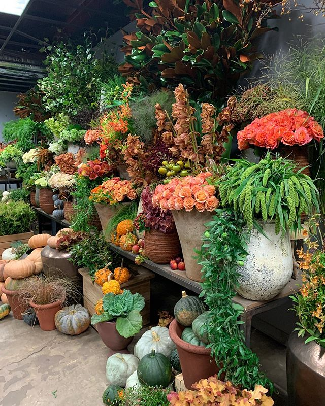 Feels like Fall at Winston Flowers! The exceptional team creates magical arrangements + clients love to have the Winston van pull up outside. Beyond events, @winstonflowers sets the tone for your front desk, conference rooms + executive gifts. DM us for their direct contact for all holiday orders. Now available in Boston + NYC 💫