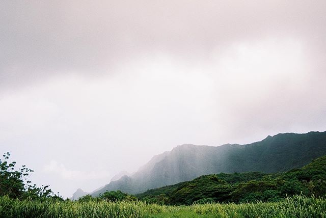Keaomālamalama... the light that shines through the clouds.  We had some down pour on us as my husband and I helped out on our friendʻs Kuleana land in Kauaʻi. It rained, but the rain brought the most beautiful clouds and light. It was beautiful. Keaomālamalama is also one of my sonʻs middle names; so, it always means something extra special when we see it being played out in front of us. #findmeaning #portra400 scanned by @thefindlab #offislandkeiki #kauaʻi