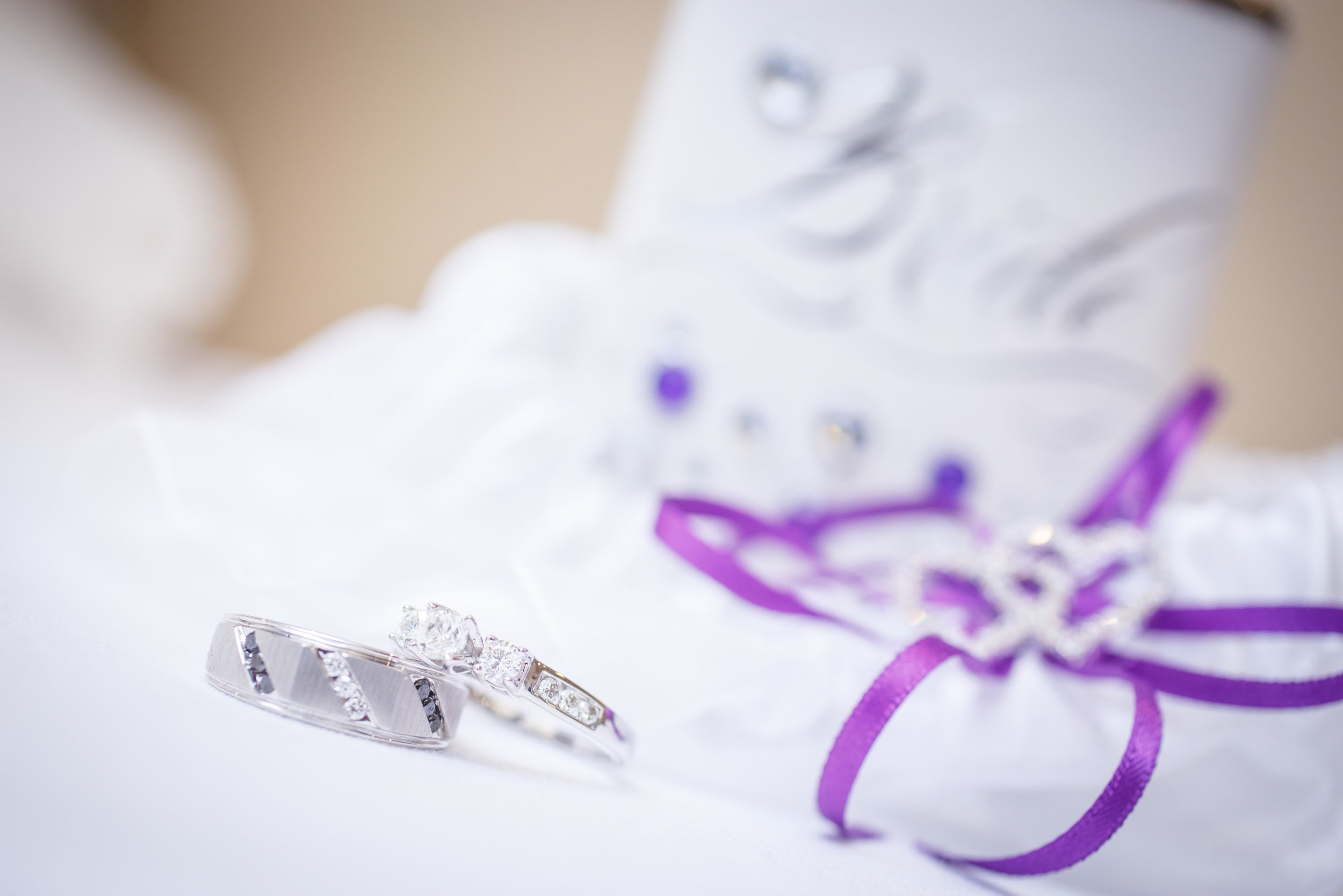 8 Sheraton Towson Wedding Sean & Isis.JPG