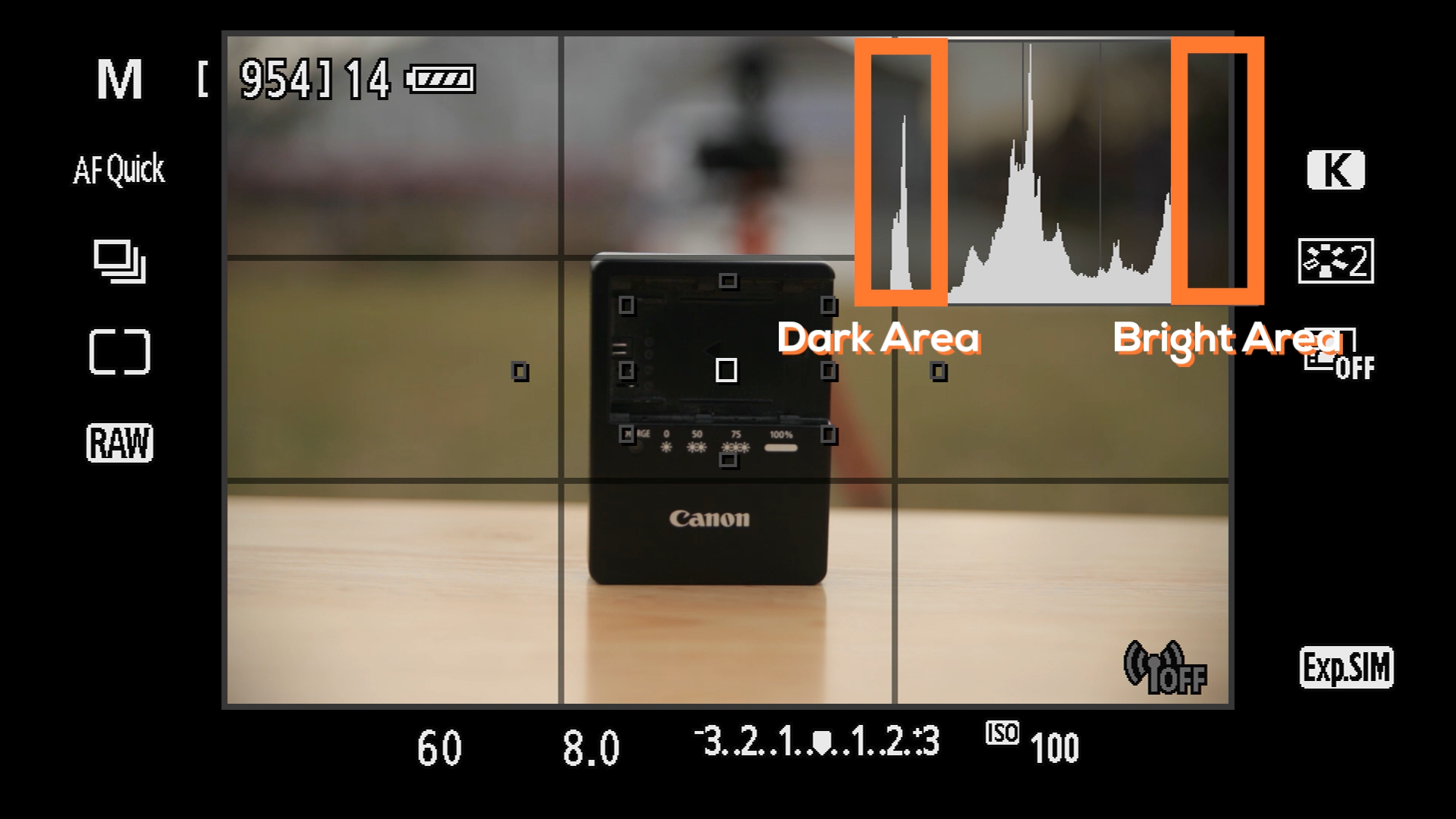 Perfect Exposure - This module is one long video broken down into 3 sections.First you'll learn how to use your camera's built in Histogram and Light Meter. Secondly, you'll learn about how to use the different metering modes and how they will effect your light meter readings.Lastly, I demonstrate the different shooting modes and how your Light Meter will effect your selected shooting mode.