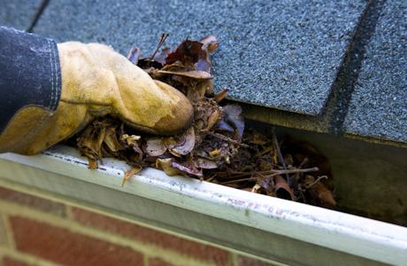 Lavage Des Gouttières    En plus de vider vos gouttières de quelconque résidu (feuilles, roches, branche, etc), nous nous assurons que la descente n'est pas congestionné. Finalement, nous rinçons la gouttière et la descente enfin de s'assurer qu'il ne reste aucun résidu.