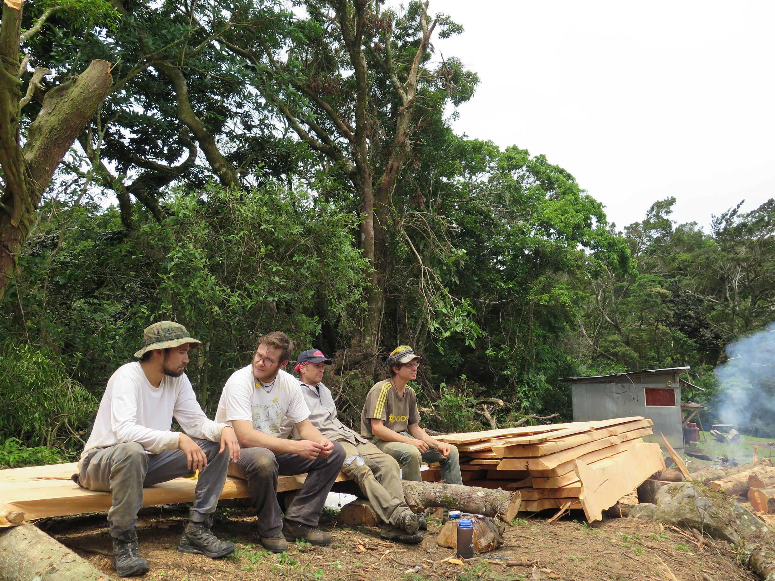 Lumberjacks Apprentice