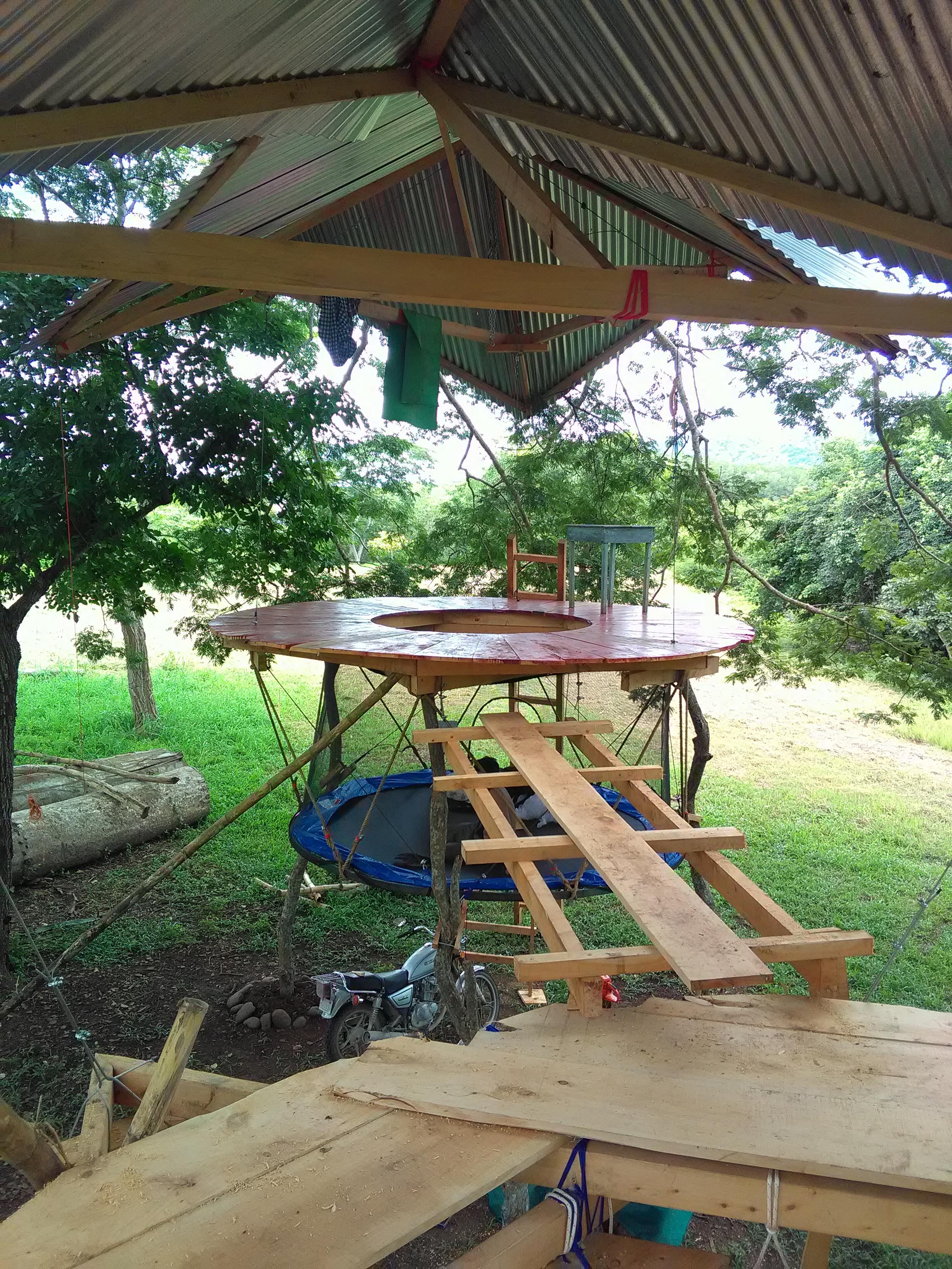 Puusta roikkuvia toimisto rakenteita /Office structures hangin from the tree