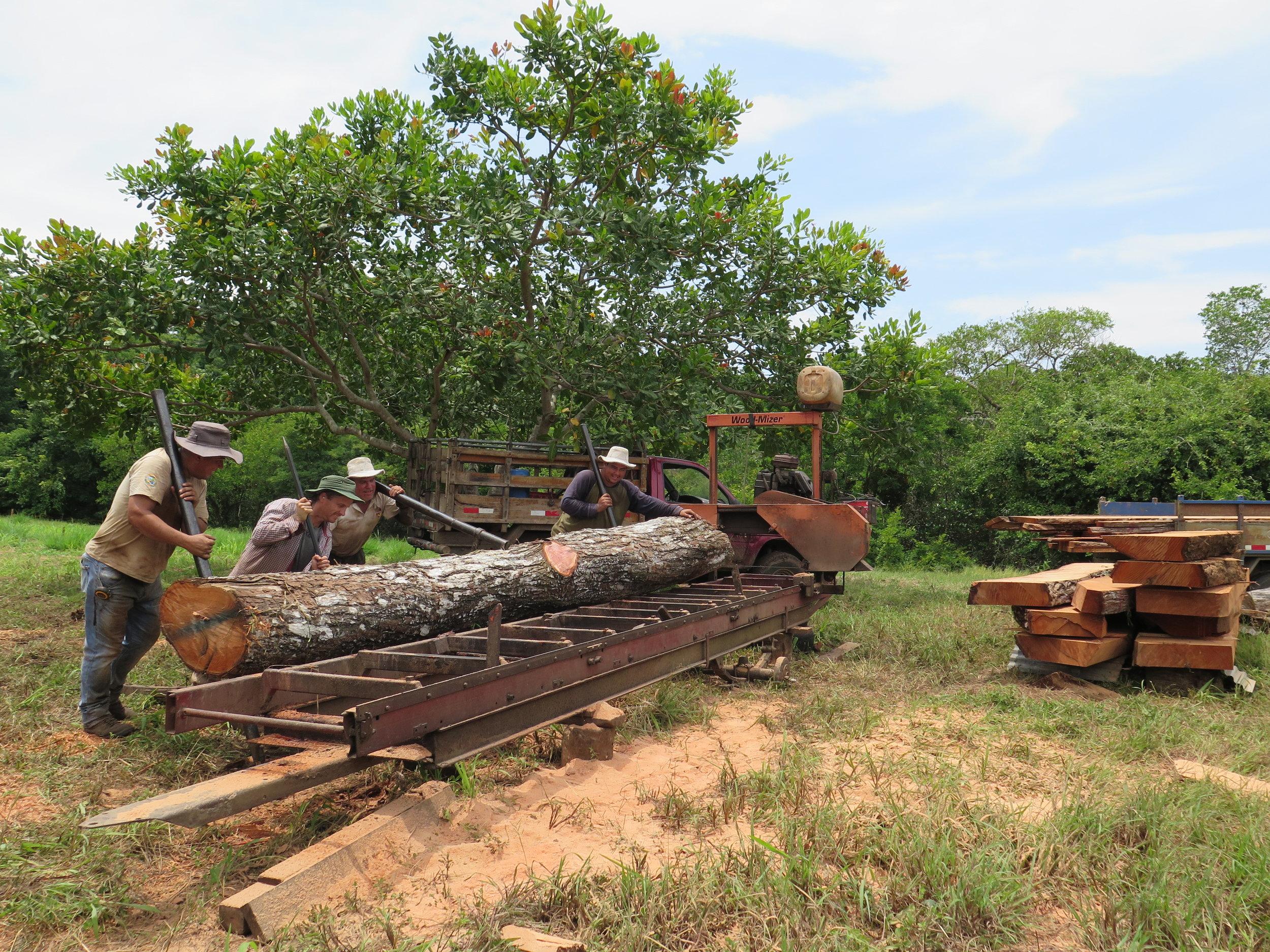 Location: Cocoroca, Punta Morales. Shipyard.  Milling the 'Cedro Amargo' (Spanish Cedar) with the Costa Rican sawyers / lumberjacks