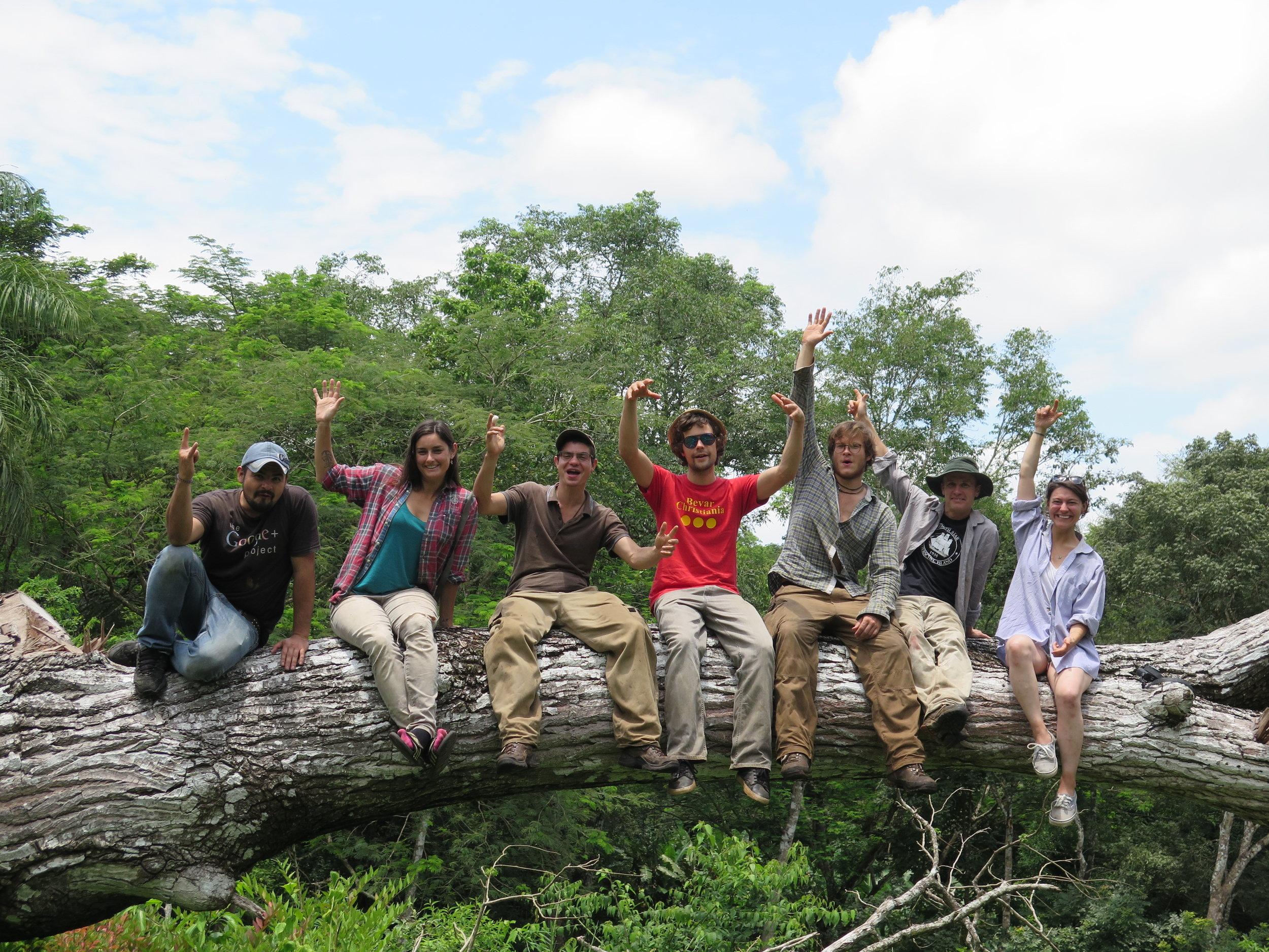 Location: La Pita, Guicimal  Our team visiting the site where our Spanish Cedars (Cedro Amargo) were sourced.  From Left: Paolo, Danielle, Yannick, Ville, Gero, Lynx & Natassia.