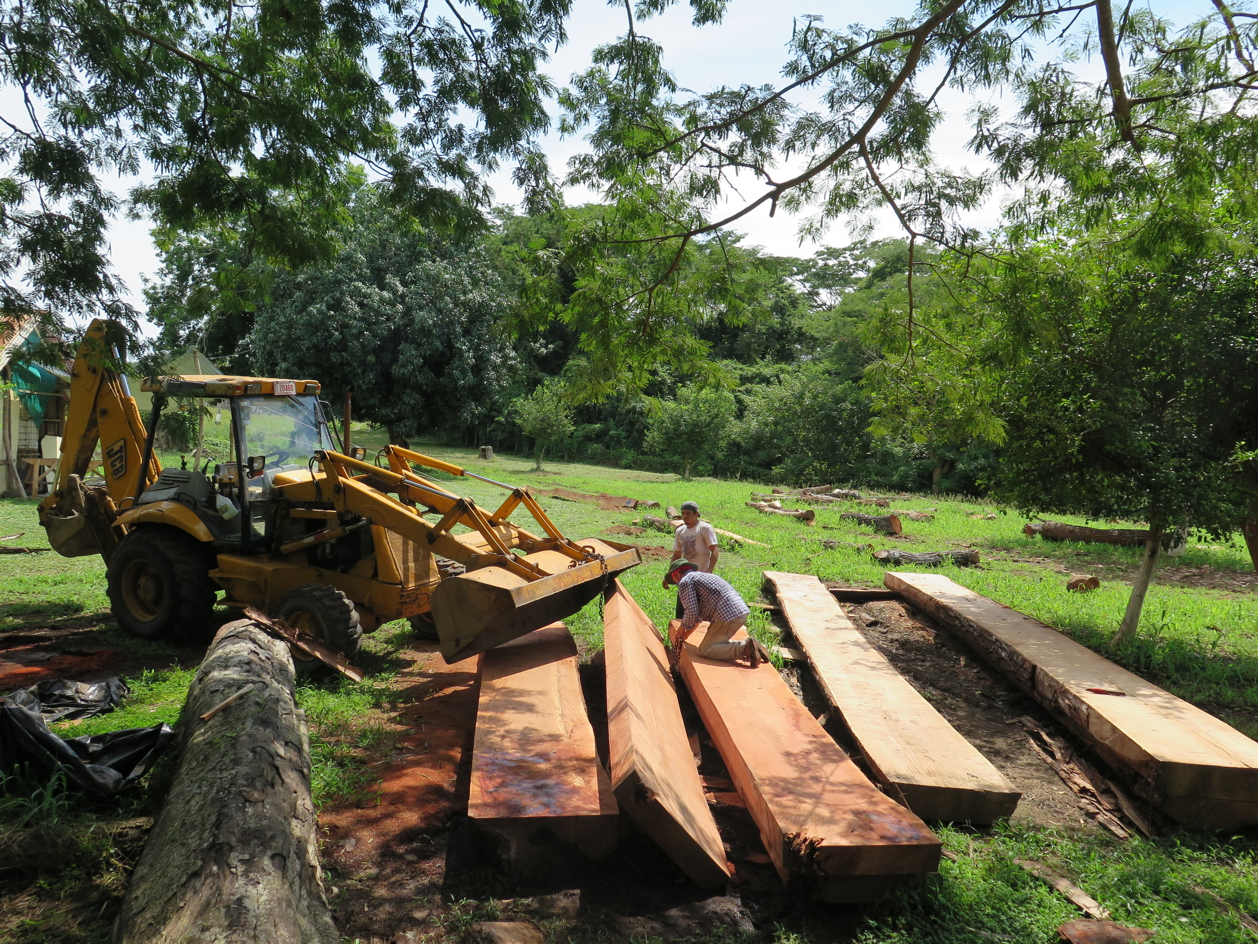 Location: Cocoroca, Punta Morales. Shipyard.  The neighborhood tractor at the yard, re-stacking the sawn timbers. These large pieces will soon become deckbeams of CEIBA.