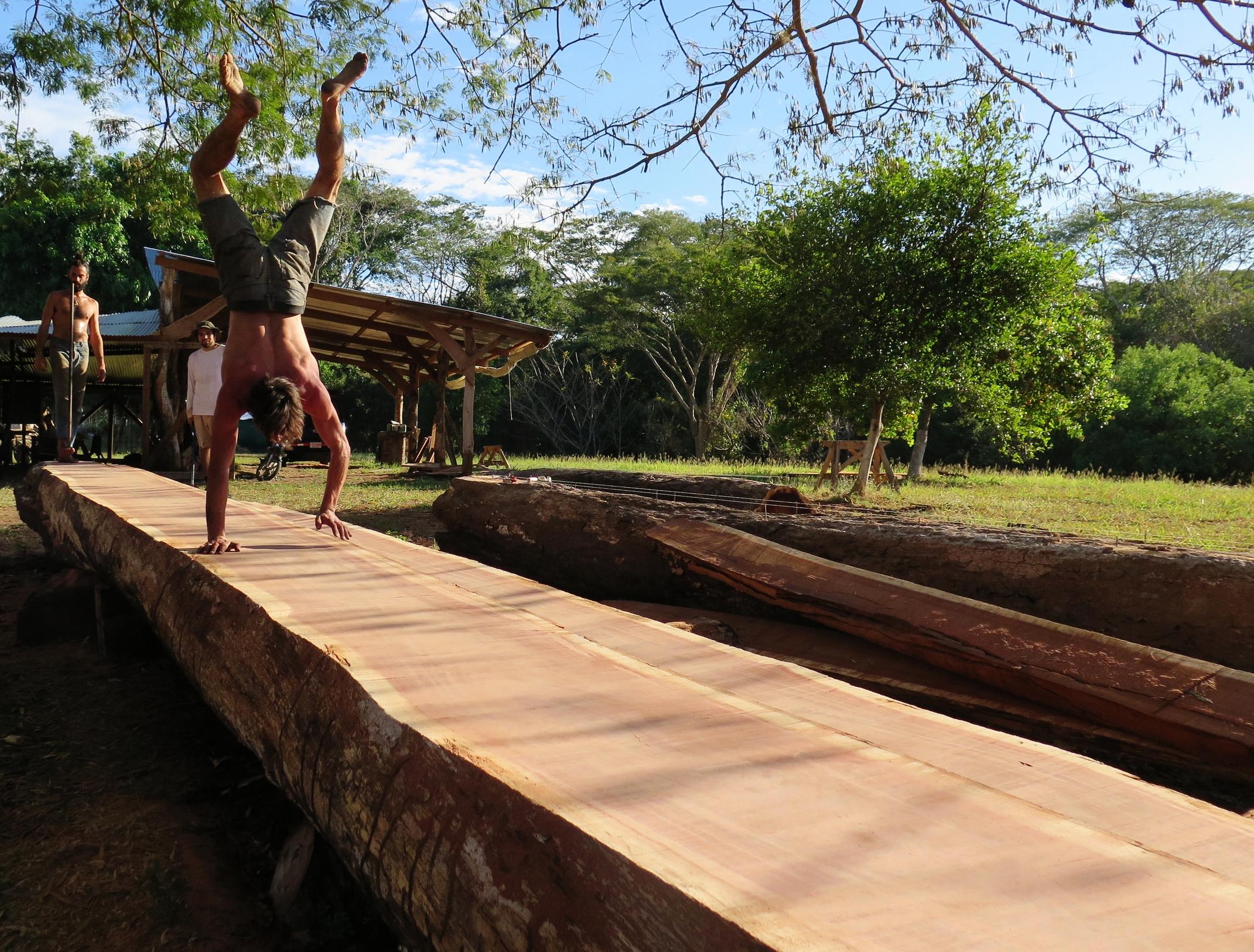 Melle celebrates milling the largest hardwood at the shipyard...