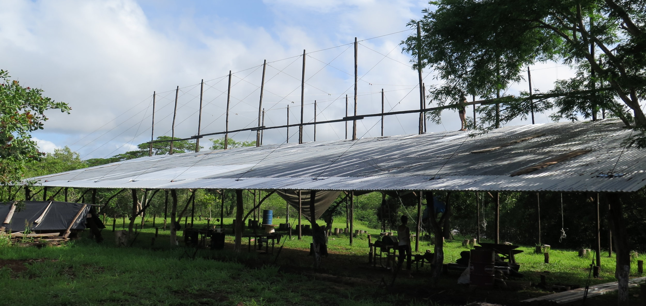 A view of the completed tin roof over what will soon be our lofting floor. All of the patterns for the elements of  Ceiba will be drawn - or lofted - full scale under this roof. Thank you to Eleanora & Mate for all of their help completing these large-scale tasks.