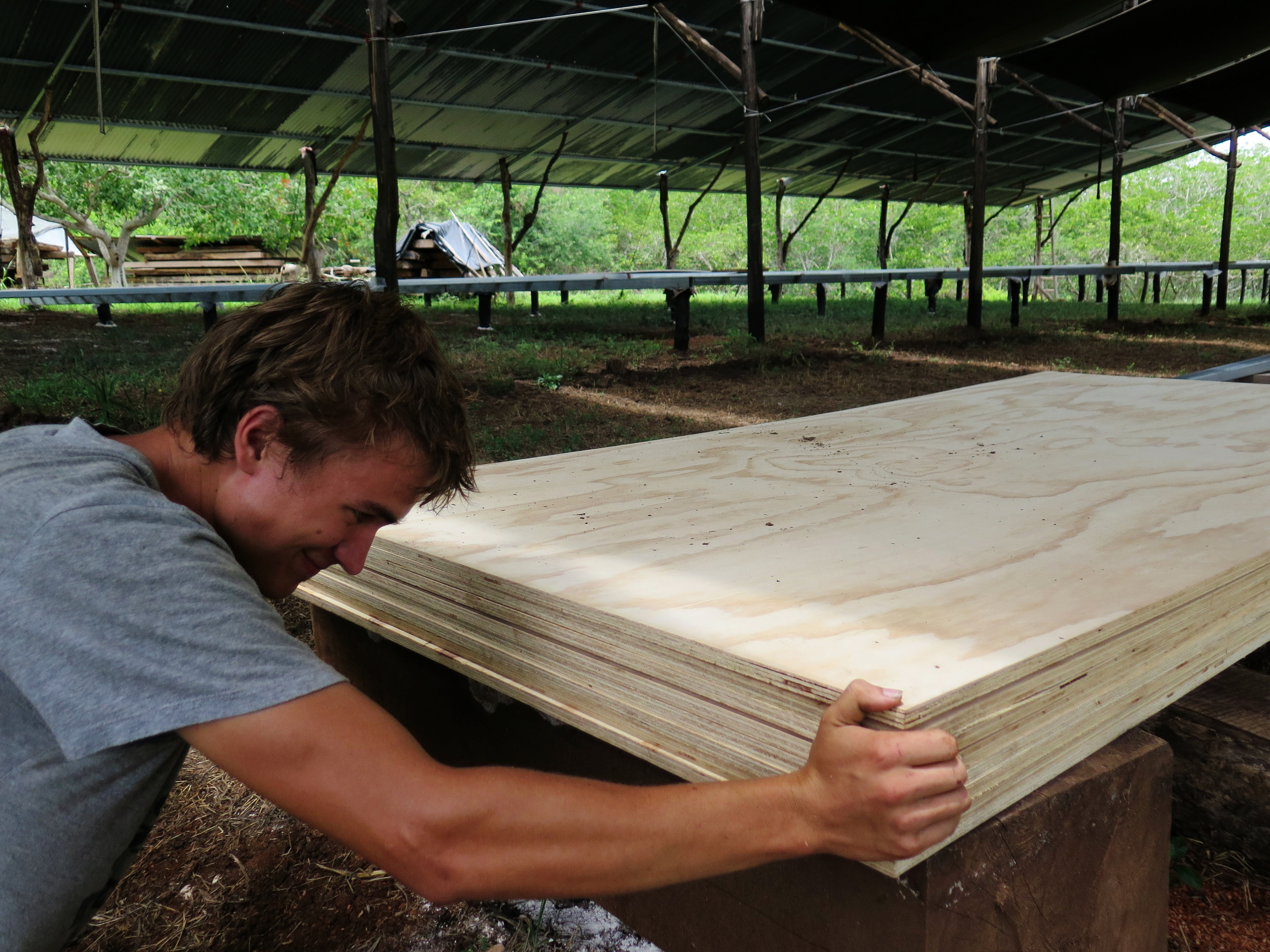 Simon stacking the plywood boards in place a few weeks ago, ready to be painted in white in preparation for laying the lofting floor.
