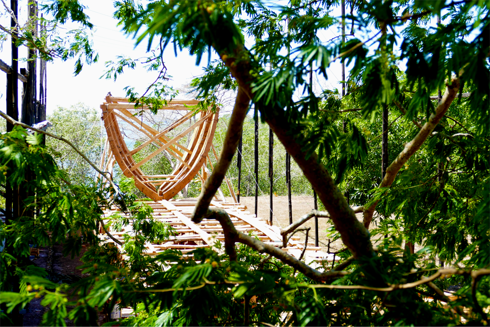 Frame under Guanacaste (small format).png